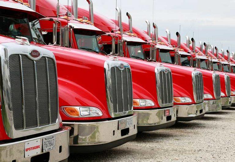 flota camiones competitiva